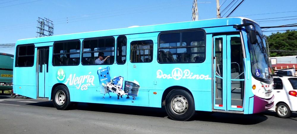 Traseras de Bus
